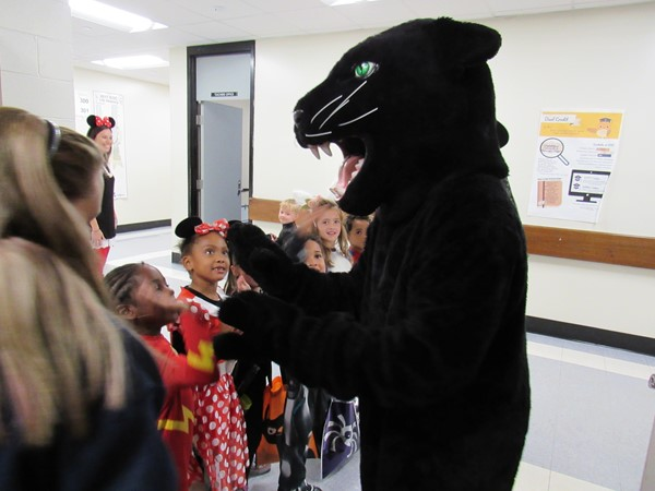 Even the Panther loves Halloween!